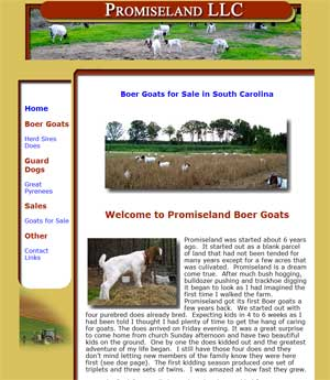 Boer Goats for sale South Carolina