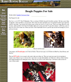 Rabbit Hunting Beagles for Sale South Carolina