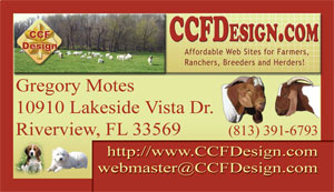 Boer Goat Web Design Business Card