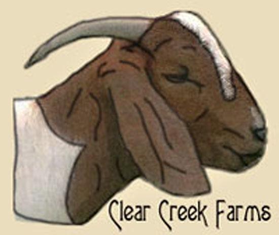 Goat Drawings - Drawing Goats